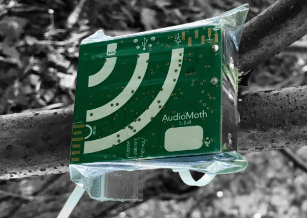 AudioMoth